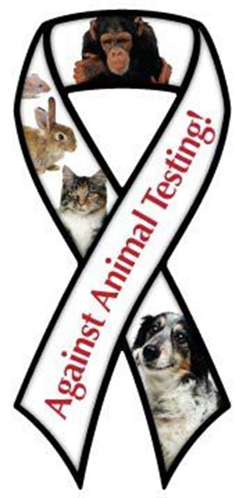 Animal rights research papers
